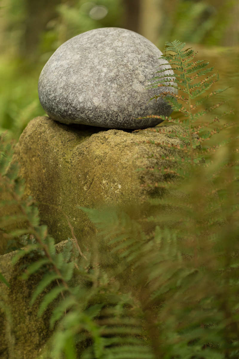 Bronze pebble urn in forest 2